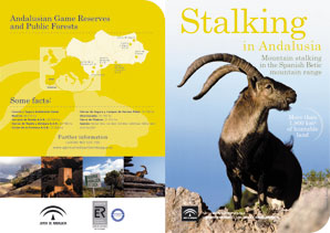 Stalking in Andalusia in pdf