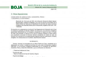 NOTICIA BOJA